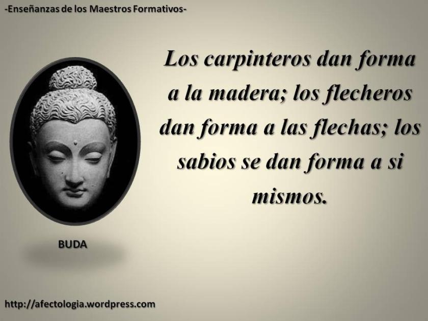 BUDA Y SABIDURIA